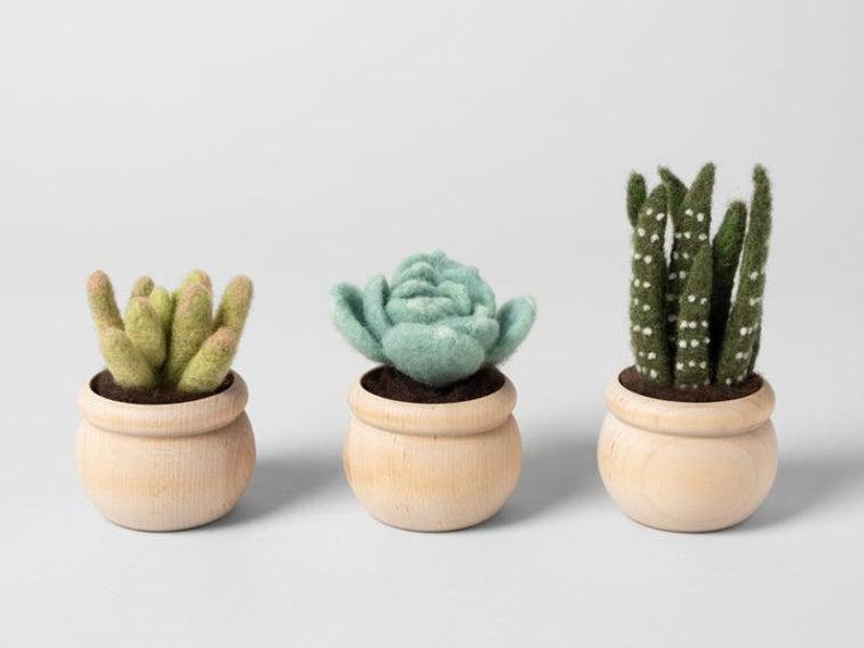 Three needle felt cactus kit